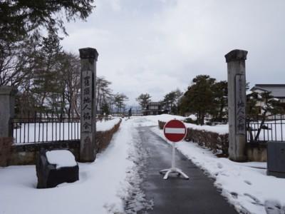 2014年3月の桜ライン植樹行 3/13~3/18